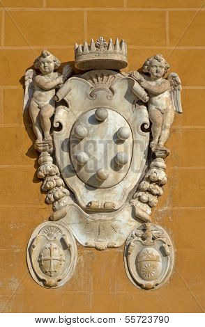 The Medici Family Embleme