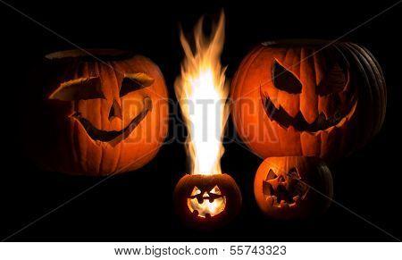 Jack-O-lantern Family