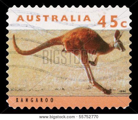 AUSTRALIA - CIRCA 1994: stamp printed by Australia, shows kangaroo, circa 1994