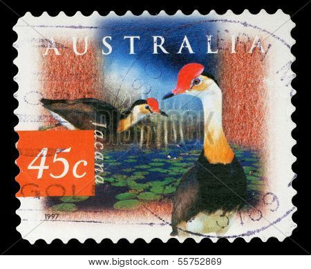 AUSTRALIA - CIRCA 1997: a stamp printed in the Australia shows Comb-crested Jacana, Irediparra Gallinacea, Tropical Wader, circa 1997