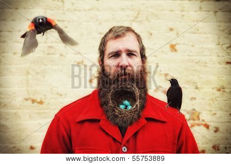 a guy with a nest in his bushy beard