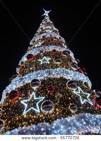 Giant outdoors Christmas tree illuminated at the evening night against dark blue sky