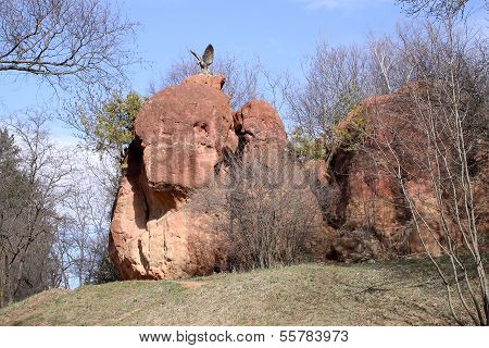Eagle. Symbol Of City Kislovodsk