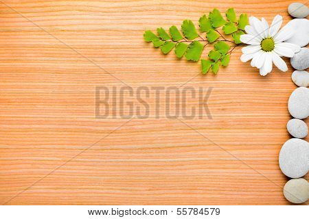 Flowers And Pebbles  Frame On Wooden  Background