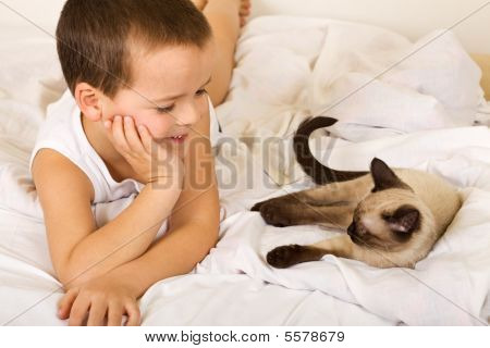 Little Boy Enjoying The Company Of His Kitten