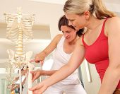 stock photo of physical education  - Specialist explainint the hip to a patient