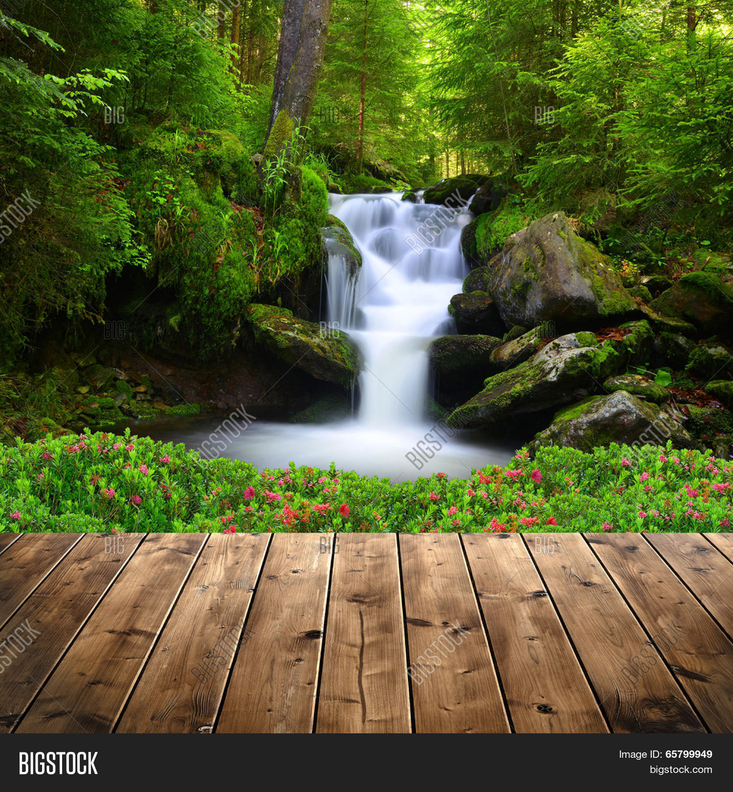 Beautiful waterfall in green forest Stock Photo & Stock ...