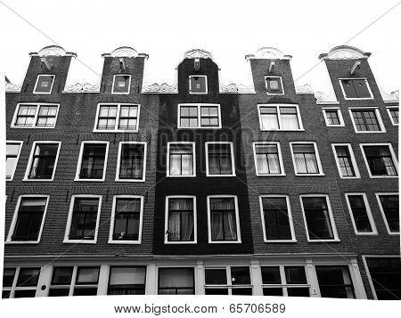 Amsterdam Living