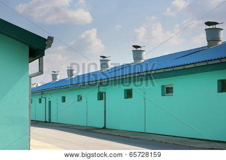 New modern pig farm exterior
