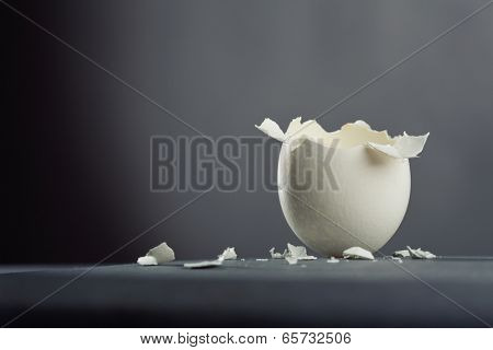 Broken egg isolated on gray background