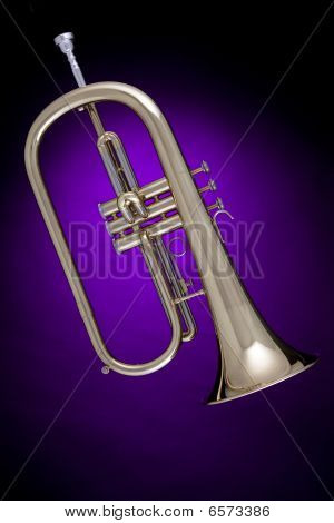 Flugalhorn Or Flugelhorn  Isolated On Purple