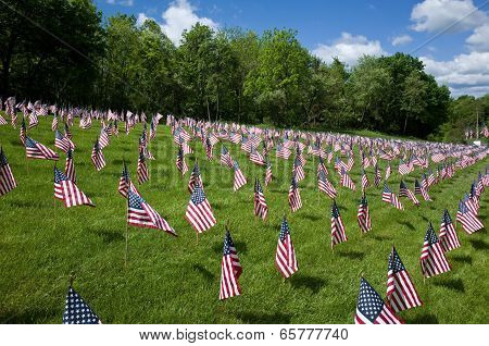 Saluting Our Veterans