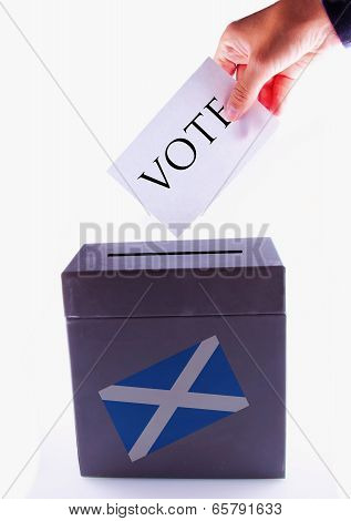 Scottish Urn For Vote