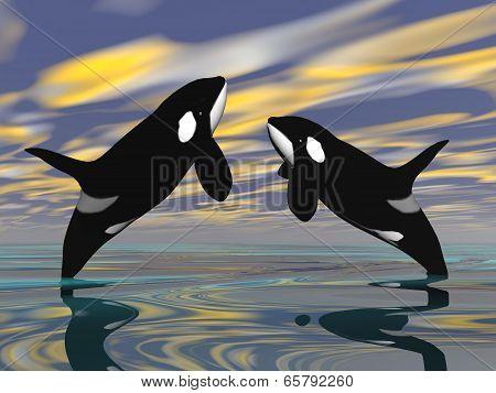 Killer whales jump - 3D render