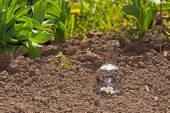stock photo of flask  - flask with clear water or fertilizer on dry soil - JPG