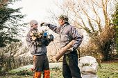 foto of prunes  - Two professional gardeners pruning trees in the garden - JPG