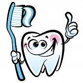 image of teeth  - Healthy cute cartoon tooth character making a thumb up gesture while smiling happily and holding a dental tooth brush with tooth paste - JPG