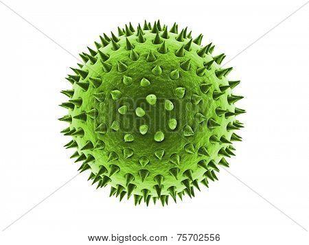 pollen illustration