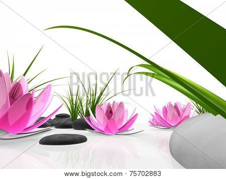 3d abstract lotus