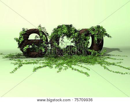 ivy eco