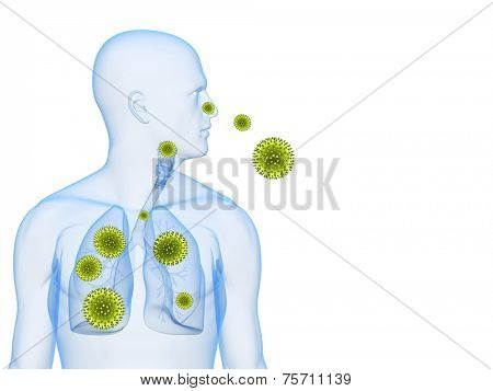 pollen allergy illustration