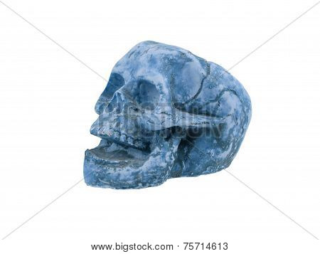 Single Old Skull Isolated
