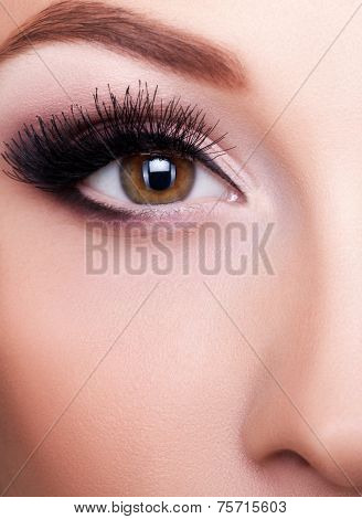Eye close up shot with professional make up