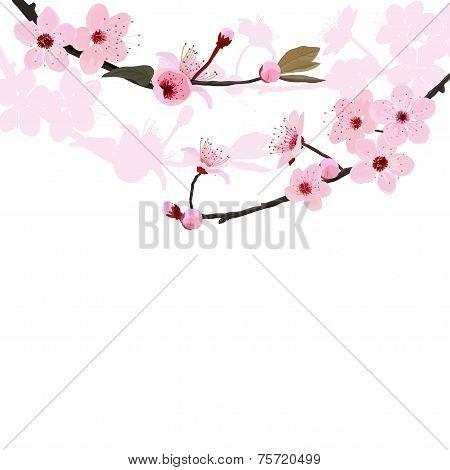 Flower tree background