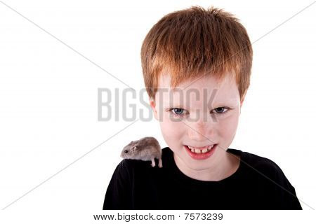 Cute Boy With Hamster On Shoulder