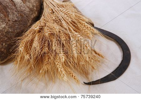 bunch of mown wheat ears with vintage handmade reaper hook sickle and rye dark french fresh bread loaf on white linen tablecloth high resolution hidef