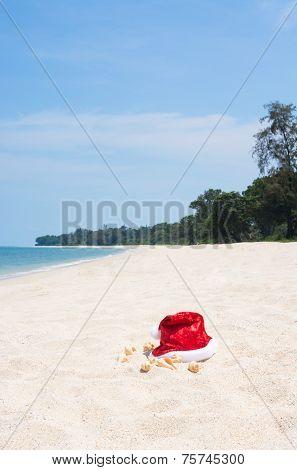 Tropical Christmas On An Island