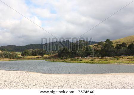 Pastoral New Zealand Landscape