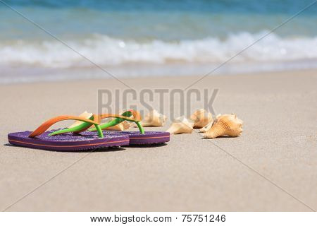 Tropical Beach Holiday Getaway