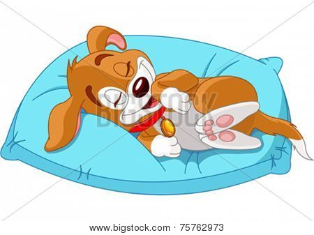 Cute doggy lies on the pillow
