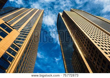 Looking up at Dallas