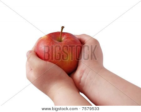 Apple In Palms
