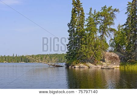Calm Lake In The Wilderness