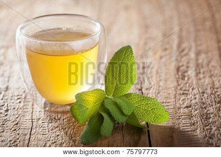 herbal sage tea with green leaves in glass cups