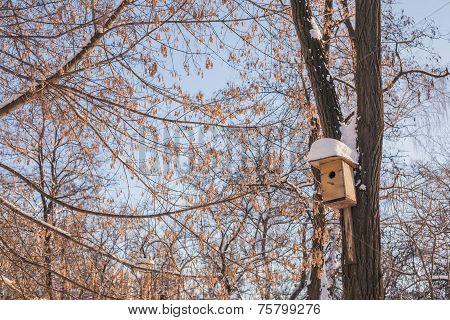 Nesting box under snow