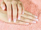 pic of french manicure  - Beautiful woman - JPG