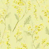 foto of mimosa  - Seamless Spring Pattern with Watercolor Sprig of Mimosa - JPG