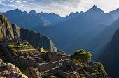 picture of lamas  - Machu Picchu at sunset when the sunlight makes everything golden - JPG