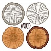 stock photo of cutting trees  - Vector tree rings - JPG