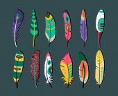 foto of scribes  - Close up Attractive Colored Feathers Icon Set Designs on Gray Background - JPG