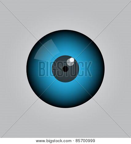 Eye Ball Vector