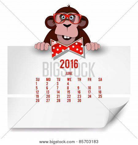 Calendar With A Monkey For 2016. The Month Of June.
