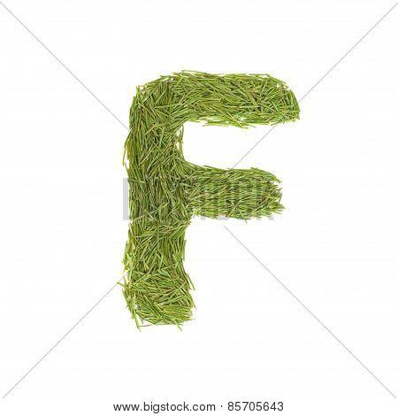 Green Alphabet, Letter F