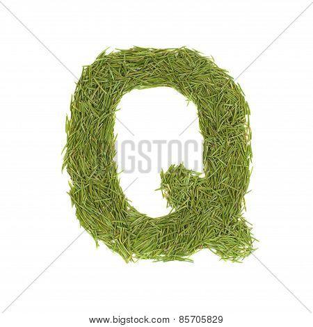 Green Alphabet, Letter Q