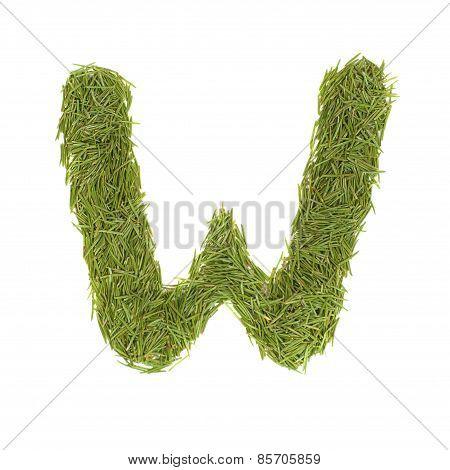 Green Alphabet, Letter W