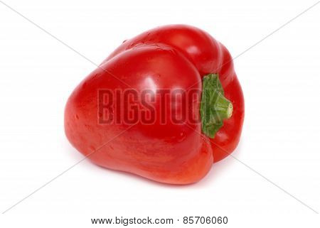Red Paprica